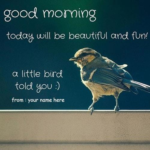 write name good morning quotes with birds