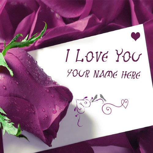 Write Name On I Love You Purple Roses Images