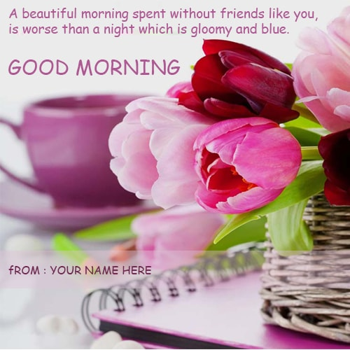 Rose Flowers Good Morning Wishes Cards Name Edit